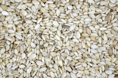 Macro of the seeds of sesame. Top view. Can be used as a background Stock Photos