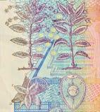 un macro sguardo di 100 corone svedesi Immagini Stock Libere da Diritti