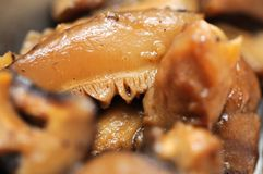 Macro of shitake mushrooms. Macro of cooked shitake mushrooms as cooking ingredients, especially used in Asian cuisine such as Chinese and Japanese. For concepts Stock Photo