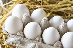 Macro shoot of brown / white  eggs at hay nest in chicken farm.  stock photography