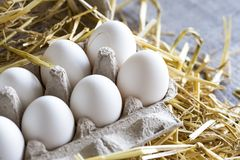 Macro shoot of brown / white  eggs at hay nest in chicken farm.  stock photos
