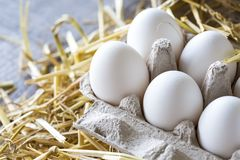 Macro shoot of brown / white  eggs at hay nest in chicken farm royalty free stock photo