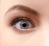 Macro shoot of an eye of a young female Royalty Free Stock Image
