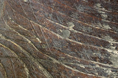 Macro shoot of small  part of   grunge bench seat 2. Close-up of  old, decaying,peeled ,scratched, rough,brown and grey wooden board surface Royalty Free Stock Photography
