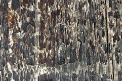 Macro shoot of small  part of   grunge bench seat 12. Close-up of  old, decaying,peeled ,scratched, rough,brown and grey wooden board surface Royalty Free Stock Photos