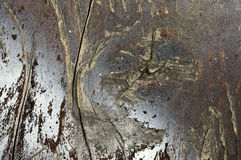 Macro shoot of small  part of   grunge bench seat 4. Close-up of  old, decaying,peeled ,scratched, rough,brown and grey wooden board surface Royalty Free Stock Images