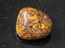 Polished Script stone gemstone on dark Stock Photography