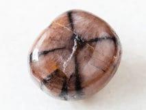 tumbled Chiastolite gemstone on white royalty free stock images