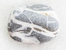Tumbled gray Gneiss stone on white marble. Macro shooting of natural mineral rock specimen - tumbled gray Gneiss stone on white marble background Stock Photography