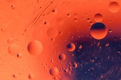 Macro shot of backlit water-oil emulsion over colored background. Tiny gas bubbles inside larger oil bubbles inside water base. Drops of water and scratches on royalty free stock photo