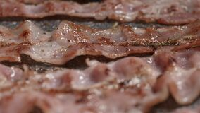 Macro shot of the bacon cooking process. Appetizing cuts of meat are fried in a pan.