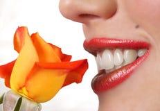 Macro shot of beautiful full lips Stock Photos