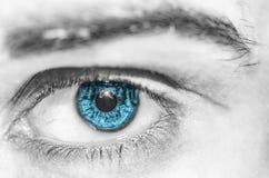 Close-up colorful human eye stock image