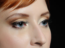 Macro shot of blue eyes with long lashes. Beautiful macro shot of blue eyes with long lashes and make-up in brown tones Royalty Free Stock Photography