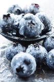 Macro shot of blueberries Stock Photo