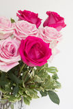 Macro shot of bouquet of roses. Large bouquet of light and dark fresh cut pink roses on the center of whole vertical image Stock Photos