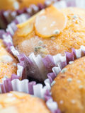 Macro shot of breads mole Stock Image