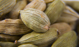 Macro shot of Cardamoms Royalty Free Stock Photography
