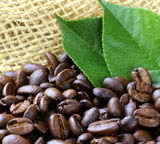 Macro shot of coffee beans Royalty Free Stock Image