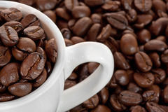 Macro shot of coffee cup and coffee beans. Macro shot of coffee beans in coffee cup with coffee beans background Royalty Free Stock Images