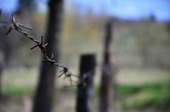 Macro shot of an element of old and rusty barbed wire with a blurred background. Fragment of a village fence of a territorial sit. E royalty free stock photos