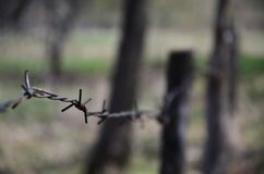 Macro shot of an element of old and rusty barbed wire with a blurred background. Fragment of a village fence of a territorial sit. E royalty free stock photography