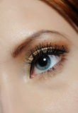 Macro shot of eye with brown make-up Royalty Free Stock Photography