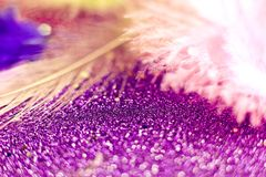 Macro shot of feather and glitter Royalty Free Stock Image