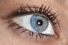 Eye Looking Up-Right Royalty Free Stock Images