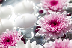 Macro shot of flower table decorations. Floating Candles and Flowers. Decoration for a garden party stock photo