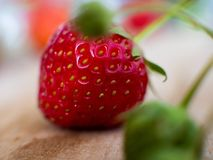 Macro Shot of a freh strawberry Stock Images