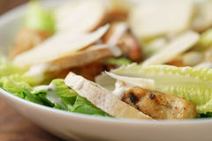 Macro shot of fresh homemade caesar salad with chicken Royalty Free Stock Image