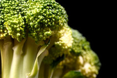 Macro shot of fresh ripe brocoli isolated on black Stock Photography