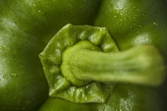 Macro shot of a green pepper. Royalty Free Stock Images