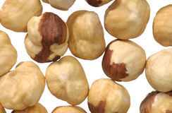 Macro shot of hazel nuts Royalty Free Stock Photos