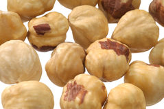 Macro shot of hazel nuts Stock Images