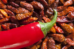 Macro shot of hot red chili peppers Stock Photos