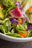 Macro shot of italian salad with freshly harvested organic vegetables Stock Image