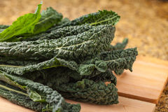 Macro shot of lacinato kale Royalty Free Stock Photos