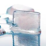 Macro shot of melting piece of ice Royalty Free Stock Photo