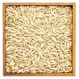 Oat groats background in box Royalty Free Stock Photos
