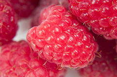 Macro shot of raspberry Royalty Free Stock Photo