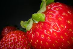 Macro shot of red juicy strawberry on black background. Sweet harvested berry background, healthy food lifestyle royalty free stock image
