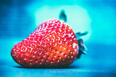 Macro shot of red strawberry on the blue background Royalty Free Stock Photography