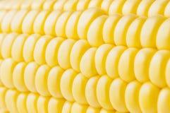 Macro shot of ripe corn grains Stock Photo