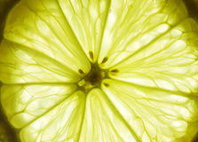 Macro shot of ripe lemon Royalty Free Stock Photo