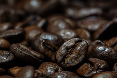 Macro shot of roasted coffee beans as dark brown background text Royalty Free Stock Photos