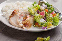 Macro shot of salad with chicken. Italian salad with rotisserie chicken and white rice macro shot Stock Photography