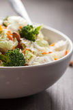 Macro shot side view of Asian Napa cabbage salad. Asian Napa cabbage salad with organic broccoli, almonds, chicken, and a rice vinaigrette side view macro shot Royalty Free Stock Images