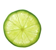 Macro Shot of a Slice of Lime Stock Photography